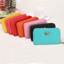 women-bowknot-purse